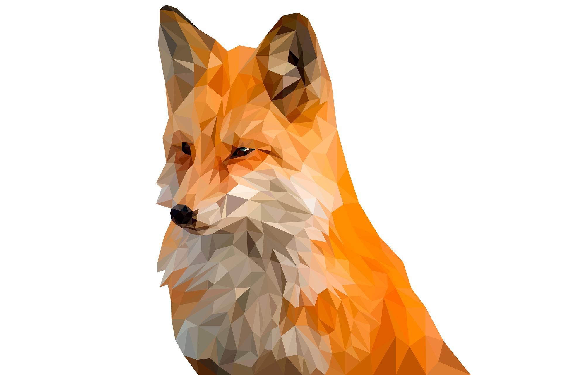 Polygon Fox - Toe Heftiba